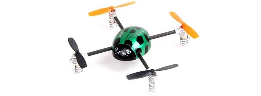 Ladybird quadricopter